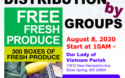 Fresh Food August 8, 2020 / Distributions by Groups 1